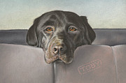 Pastel Dog Paintings - Where we go today? by Natasha Denger