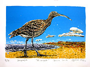 Clounds Mixed Media Framed Prints - Whimbrel Framed Print by Javier Molina