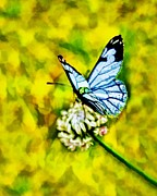 Butterfly On Flower Prints - Whimsical Butterfly On A Flower Print by Tracie Kaska