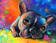 Pictures Drawings Prints - Whimsical Colorful French Bulldog  Print by Svetlana Novikova