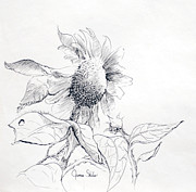 James Skiles Prints - Whimsical Sunflower  Print by James Skiles