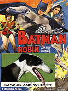 Whippet Painting Prints - Whippet Art - Batman Movie Poster Print by Sandra Sij