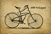 Whippet Prints - Whippet Bicycle Print by Tom Mc Nemar