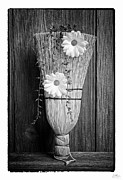 Grunge Photo Framed Prints - Whisk Bloom - Art Unexpected Framed Print by Tom Mc Nemar