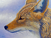 Coyote Paintings - Whisper by Brian  Commerford