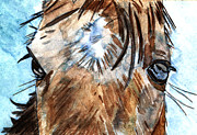 Horse Prints - Whisper Print by Elizabeth Briggs
