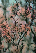 Whispering Cherry Blossoms Print by Janice MacLellan