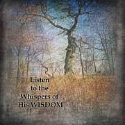 Pamela Baker - Whispers of Wisdom