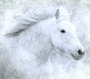 Charging Horses Prints - Whispers Song Print by Jean Moore
