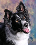 Collie Digital Art Posters - Whistle Poster by Laura Rothstein