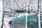 Randolph County Prints - Whitaker Falls in Winter Print by Thomas R Fletcher