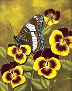Rick Bainbridge - White Admiral and Pansies
