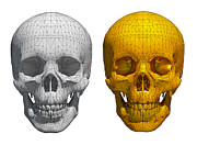 Human Skeleton Originals - White and golden skull  by Thanes