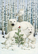 Snowy Owl Prints - White Animals Red Bird Print by Lynn Bywaters