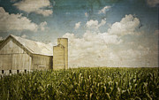 Indiana Photography Prints - White Barn Print by Michael Huddleston