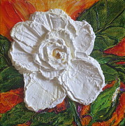 Paris Wyatt Llanso - White Begonia