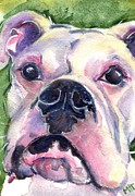 Boxer Paintings - White Boxer by Marias Watercolor