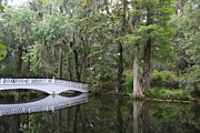 Moos Prints - White Bridge Over The Pond Print by Christiane Schulze