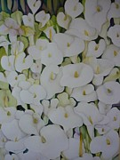 Margaret Pirrouette - White Callas