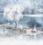 Frost Paintings - White Calm by Mo T