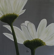 White Cosmos Print by Christiane Schulze Art And Photography