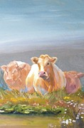 Mike Jory Cow Posters - White Cows Painting Poster by Mike Jory