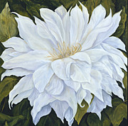 Suzie Richey - White Dahlia