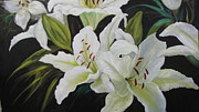 Barbara Haviland - White DayLilies