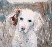 White Moon Studio Framed Prints - White Dog 2 Framed Print by Kazumi Whitemoon