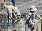 Ion vincent DAnu - White Dog and Toddler