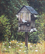 Dovecote Posters - White Doves using a Dovecote  Poster by Martin Davey