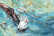 Miki De Goodaboom - White Duck On The Constance Lake In Winter