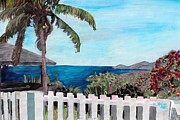 Palms Paintings - White Fence at English Harbour Antigua West Indies by M Bleichner