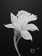 Brooklyn Bridge Painting Originals - White Flower by Shane  Santelli