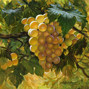 White Grapes Paintings - White Grapes by David Henderson