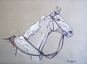 Paul Drawings - White Horse 1932 by Ann Whitfield