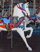 State Fair Photo Prints - White Horse Print by David and Carol Kelly
