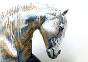 Juan Jose Espinoza - White Horse