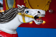Amusement Park Photos - White Horse by Juli Scalzi
