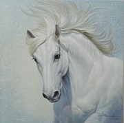 Wild Horses Drawings - White Horse Portrait by Jonal Buenafe