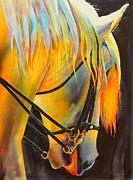 Original Horse Paintings - White Horse by Robert Hooper