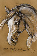 White Arab Pastels Prints - White Horse Soft Pastel Sketch Print by Angel  Tarantella