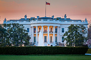 White House Photos - White House by Inge Johnsson