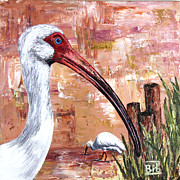 Ibis Drawings Metal Prints - White Ibis Metal Print by BibZ Priori