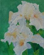 K Joann Russell - White Irises Original Oil Painting Iris Cluster Beautiful Floral Art by K. Joann Russell