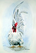 White Japanese Rooster Print by Amanda  Stewart