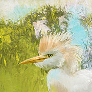 Blackbird Paintings - White Kingfisher by Catf
