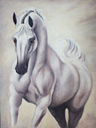 Arabian Mixed Media - White Knight by Jane Indigo Moore