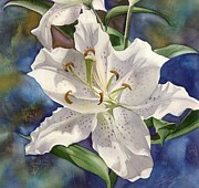 Alfred Ng - white lily