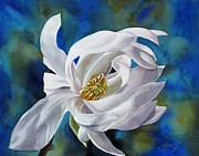 Alfred Ng Art Acrylic Prints - White Magnolia With Blues Acrylic Print by Alfred Ng
